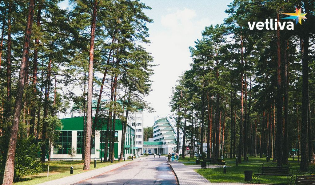 How to chose sanatorium in Belarus?