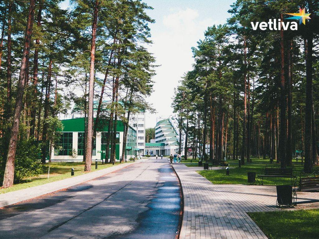 Health tours to Belarus