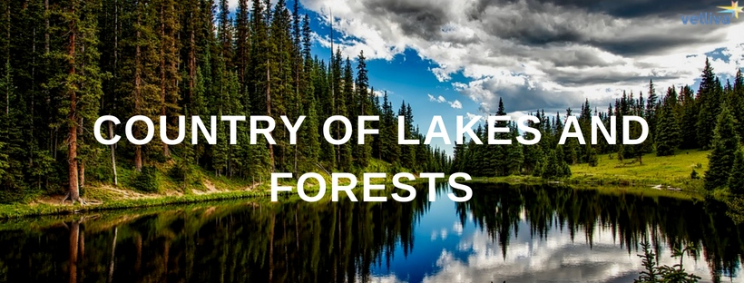 Belarus — the country of forests and lakes